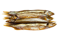 Smoked sprat isolated Royalty Free Stock Photography