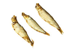 Smoked sprat Royalty Free Stock Photography