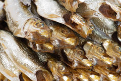 Smoked sprats. Royalty Free Stock Image