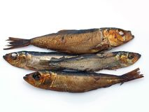 Smoked sprats 2 Stock Photos