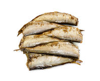 Smoked sprats fish isolated on white background. Royalty Free Stock Photo
