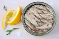 Smoked sprats fish. Stock Image