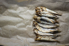 Smoked sprats. On gray paper Stock Photo