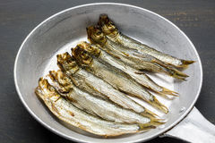 Smoked sprats. In the pan Royalty Free Stock Image