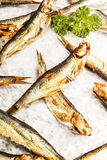 Smoked sprats and parsley on white paper. Some smoked sprats and parsley on white paper stock photos