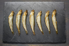 Smoked sprats. On the table Royalty Free Stock Photography