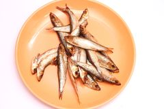 Smoked sprats Stock Images