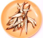 Smoked sprats Stock Photo