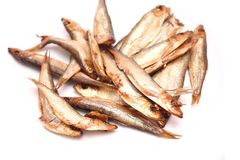 Smoked sprats Stock Image