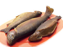 Smoked trout Royalty Free Stock Photo