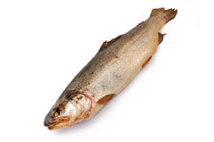 Smoked trout Stock Photos