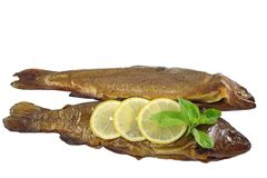 Smoked trout with basil. And lemon on white background Royalty Free Stock Photos