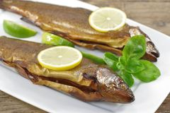 Smoked trout with basil. And lemon on white plate Royalty Free Stock Images