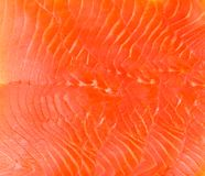 Smoked trout fillet slices as background Royalty Free Stock Images