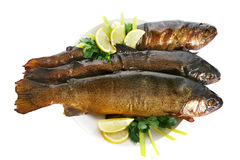 Smoked Trouts Stock Image