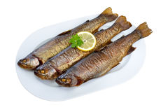 Smoked trouts. Three smoked rainbow trouts on a white plate with horseradish and a slice of baguette; the plate is isolated on white background Royalty Free Stock Images