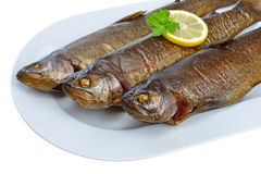 Smoked trouts Royalty Free Stock Images