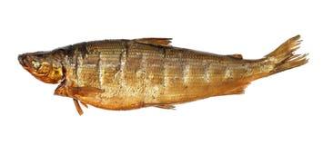 Smoked whitefish. Isolated on white Stock Photos