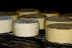 Smokehouse cheese Royalty Free Stock Image