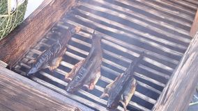 Smokehouse trout. Wooden grates and smoke coming out from underneath stock video footage