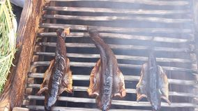 Smokehouse trout. Wooden grates and smoke coming out from underneath stock footage