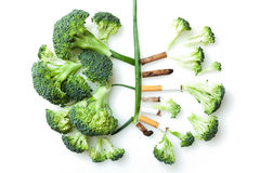 The smoker's lungs. Imitation of a smoker's lungs formed by broccoli and cigarette butts royalty free stock photography