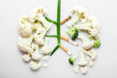 The smoker's lungs. Imitation of a smoker's lungs formed by cauliflower and cigarette butts royalty free stock image