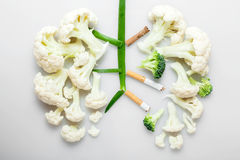 The smoker's lungs. Imitation of a smoker's lungs formed by cauliflower and cigarette butts stock photography