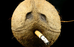 Smoker. Front view at coconut head with lit cigarette Royalty Free Stock Image