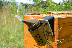Smoker on the beehive Stock Images