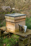 Smoker and hive. A wooden bee hive on a stand in a shaded space with a metal smoker Royalty Free Stock Photography