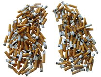 Smoker's Lungs. Made of Cigarette Butts on white Stock Photos