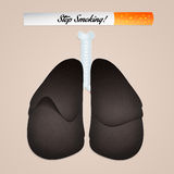 Smoker's lungs Stock Photography