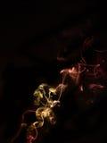 Smokes on black background. Smokes color on black background Stock Photo