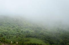 Smokey dolina zdjęcia stock