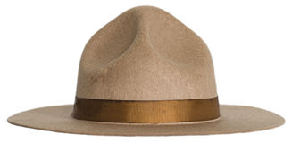 Smokey el sombrero del oso o de Forest Ranger aislado Fotografía de archivo