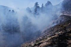 Smokey Forest Fire Photos libres de droits