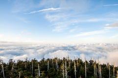 Smokey gór park narodowy Obrazy Stock