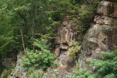 Smokey Mountain Cliff e Forest View Fotos de Stock