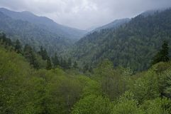 Smokey Mountain, Morton Overlook. Spring Scenic from Morton Overlook, Great Smoky Mountains National Park, TN stock image