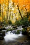 Smokey Mountains National in the fall. Smokey mountain national park with stream flowing stock image