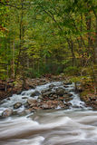 Smokey Mountain River Stock Images