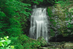 Smokey mountain waterfall royalty free stock image