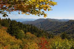 Smokey Mountains. Panoramic view of smokey mountains in tennessy in fall Royalty Free Stock Images