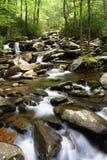 Smokey Mountains Creek. A creek runs alongside the hiking trail to Chimney Tops, Great Smokey Mountains National Park Royalty Free Stock Photo