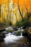 Smokey Mountains National en automne image stock