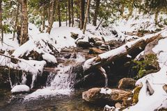 Smokey Mountains stream in the snow Royalty Free Stock Photography