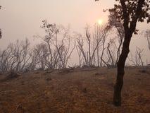 Smokey sunrise royalty free stock photography