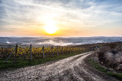 Smokey sunset. A sunset in a vineyard overlooking the village stock photography