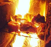 Smokeykip Stock Afbeeldingen